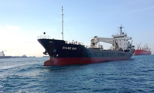 Cướp biển bắn chết 1 thủy thủ Việt, bắt cóc 6 người ảnh 1