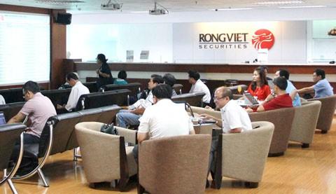 CK Rồng Việt: lợi nhuận quý I tăng xấp xỉ 157% ảnh 1