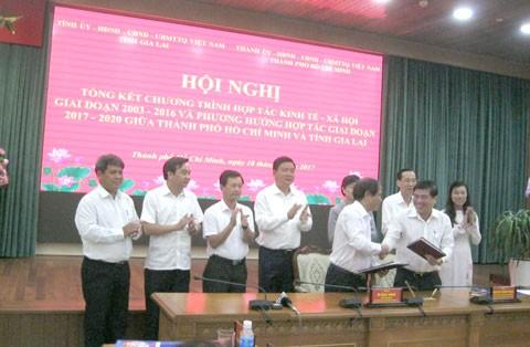 DN Gia Lai đầu tư vào TPHCM 16.000 tỷ đồng ảnh 1