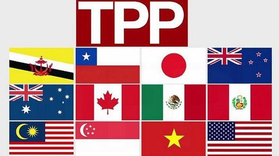 Tóm tắt Hiệp định Đối tác xuyên Thái Bình Dương ảnh 1