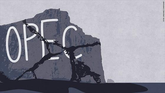 Đã quá muộn để OPEC cứu giá dầu? ảnh 1