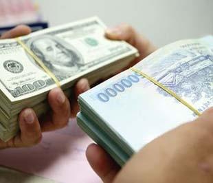 Nới tỷ giá tác động tích cực đến nợ công trong ngắn hạn ảnh 1