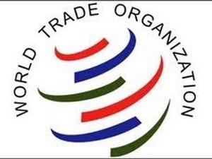 WTO hạ dự báo tăng trưởng toàn cầu ảnh 1
