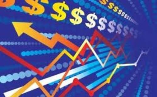 Kinh tế Việt Nam vì đâu nên nỗi? ảnh 1