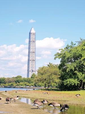Kiêu hãnh Washington DC ảnh 6