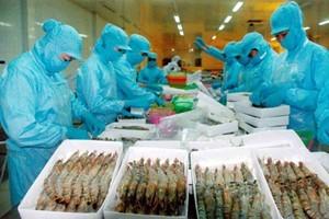 20% thủy sản của Australia là nhập khẩu từ Việt ảnh 1
