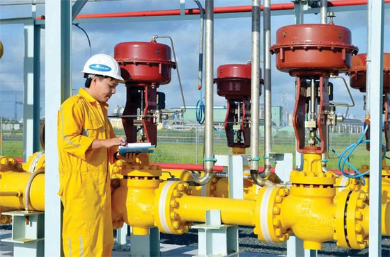 GAS muốn bán bớt 20% vốn nhà nước ảnh 1