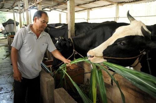 Hướng vào tín dụng nông nghiệp nông thôn ảnh 1