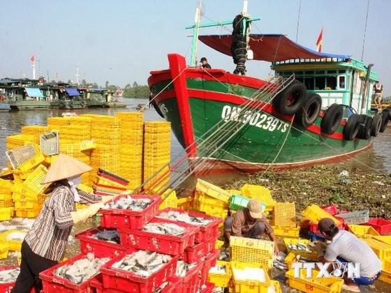 Xuất khẩu cao su và gạo sụt giảm ảnh 1