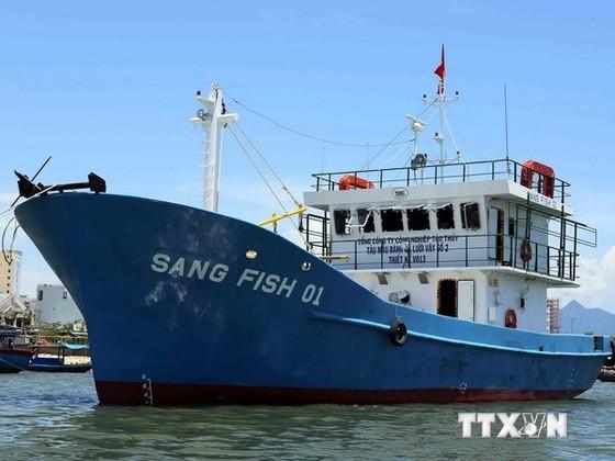 Ngư dân Quảng Ngãi vay 1.000 tỷ đồng đóng tàu ảnh 1