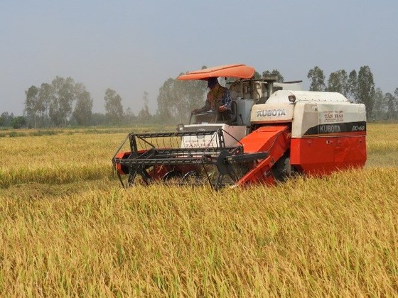 Đẩy mạnh tái cơ cấu ngành nông nghiệp ảnh 1
