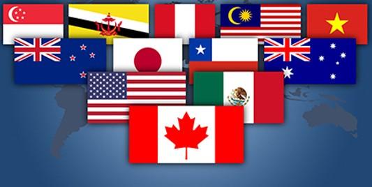 TPP: Cuộc chơi sòng phẳng ảnh 1