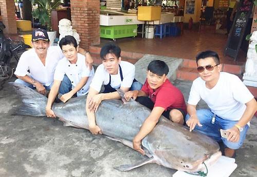 'Thuỷ quái' khổng lồ từ Campuchia về Sài Gòn ảnh 1
