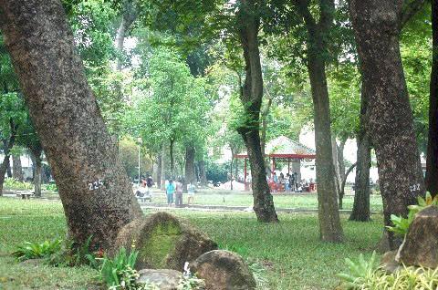 TPHCM thu hồi 2.100m2 công viên Tao Đàn xây metro ảnh 1