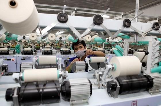 Việt Nam đối tác kinh tế quan trọng của Phần Lan ảnh 1