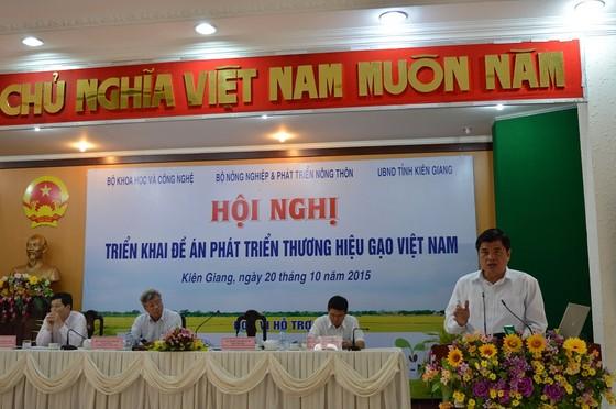 Cấp thiết xây dựng thương hiệu gạo Việt Nam ảnh 1
