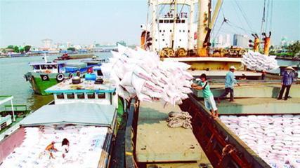 Nhiều đơn hàng xuất khẩu, giá lúa gạo tăng ảnh 1