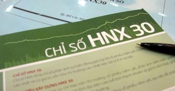 NDN được thêm vào rổ HNX30 ảnh 1