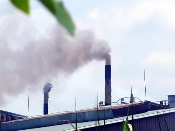 Sẵn sàng xây dựng thị trường carbon Việt Nam ảnh 1