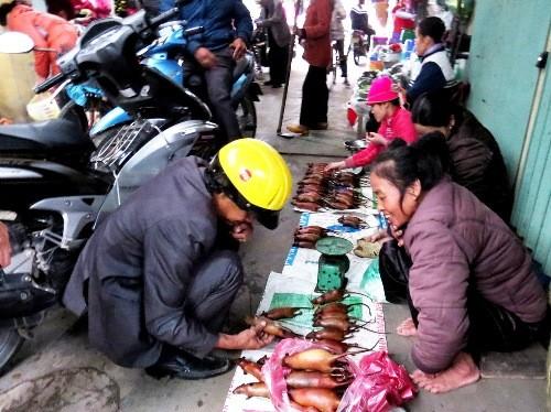 Chợ chuột đồng độc nhất vô nhị ở miền Bắc ảnh 1