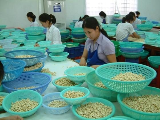 Xuất khẩu Bình Phước năm 2015 ước 1,2 tỷ USD ảnh 1