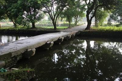 Khai quật khảo cổ thành nội Luy Lâu, Bắc Ninh ảnh 1