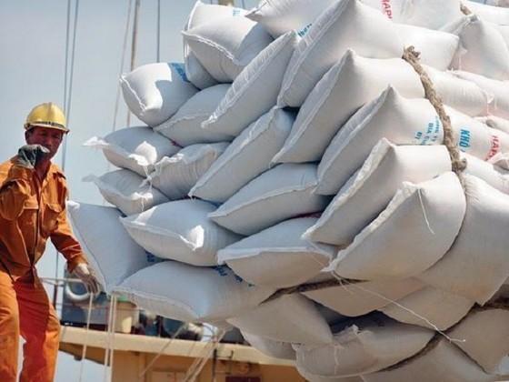 Xem lại việc khống chế số DN xuất khẩu gạo ảnh 1