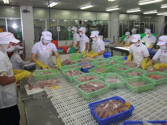 Hoa Kỳ áp giám sát cá tra trái nguyên tắc WTO ảnh 1