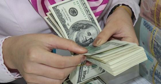 Huy động vốn bằng USD vẫn tăng ảnh 1
