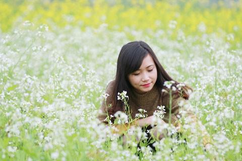 Cánh đồng hoa cải trong nắng đông ảnh 5