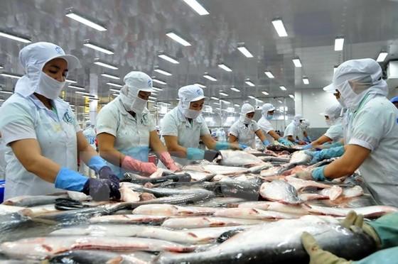 Hoa Kỳ bỏ quy định cá tra không đúng chuẩn ảnh 1