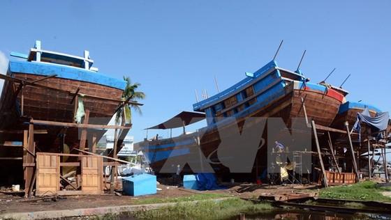 137 tàu cá đóng mới theo Nghị định 67 ảnh 1
