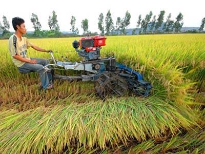 Hoàn thiện cơ chế xây dựng nông thôn mới ảnh 1