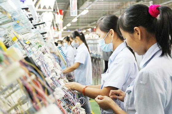 AEC: 8 lĩnh vực ngành nghề được tự do di chuyển ảnh 1