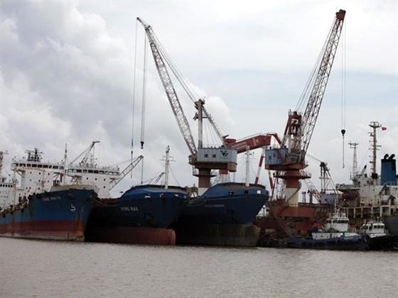 Vinalines lỗ từ cảng biển liên doanh nước ngoài ảnh 1