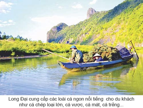 Kỳ thú vượt sông Long Đại ảnh 6