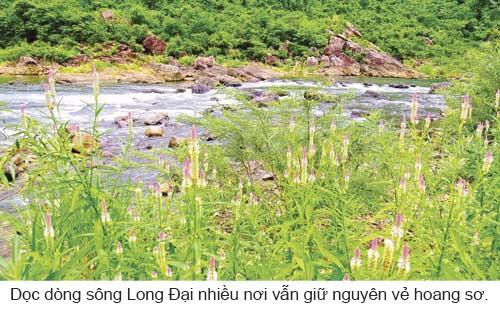 Kỳ thú vượt sông Long Đại ảnh 7