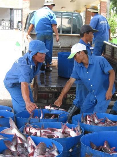Làm mới ngành thủy sản ảnh 1