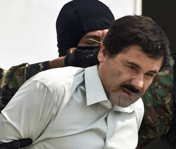 Trùm ma túy El Chapo lại bị bắt ảnh 1