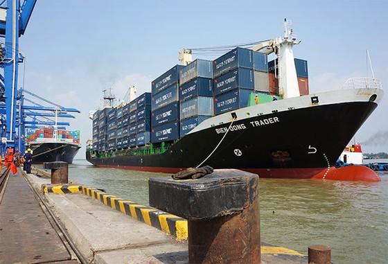 Thu phí cảng Phước An: Bất khả thi ảnh 1