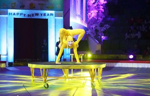 Sôi động Gala xiếc quốc tế 2016 Hà Nội ảnh 1