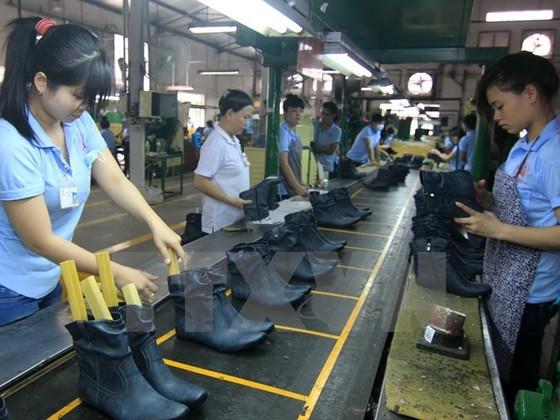 TPP cơ hội lớn ngành da giầy Việt Nam ảnh 1