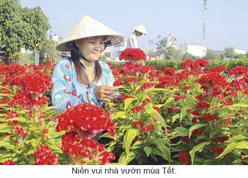 Làng hoa khoe sắc đón Xuân ảnh 7