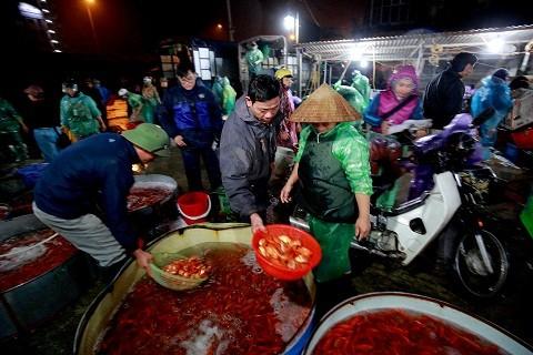 Cận cảnh chợ cá chép đỏ lớn nhất Hà Nội ảnh 1