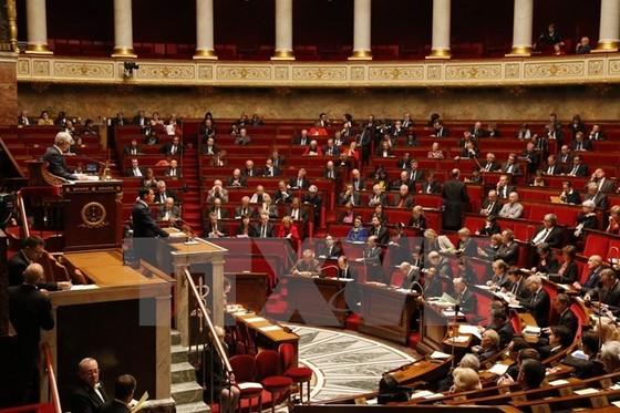 Pháp sửa đổi Hiến pháp liên quan chống khủng bố ảnh 1