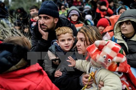 1 triệu người di cư tới các nước châu Âu trong 2016 ảnh 1