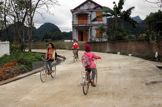 NHNN thúc cho vay xây dựng nông thôn mới ảnh 1