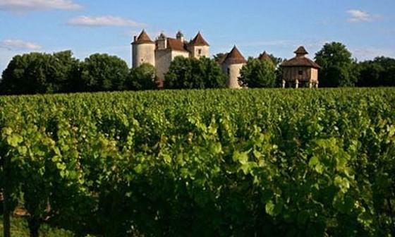 Cahors - Thiên đường sản xuất rượu vang Pháp ảnh 1