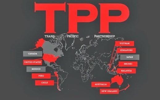 TPP - Dấu mốc quan trọng hội nhập kinh tế ảnh 1