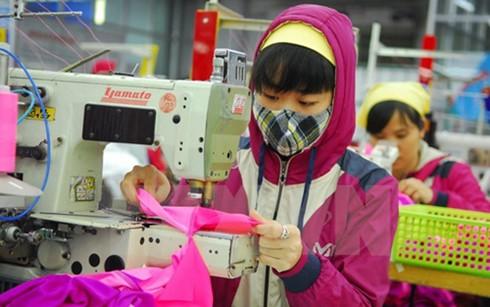 TPP giúp VN đẩy mạnh xuất khẩu hàng dệt may ảnh 1